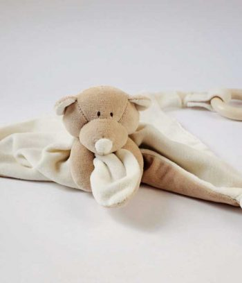 Organic Baby Pacifier Teddy